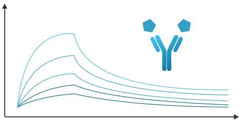 Antibody Development, Antibody Stability, Antibody Aggregation, Antibody Target Interactions