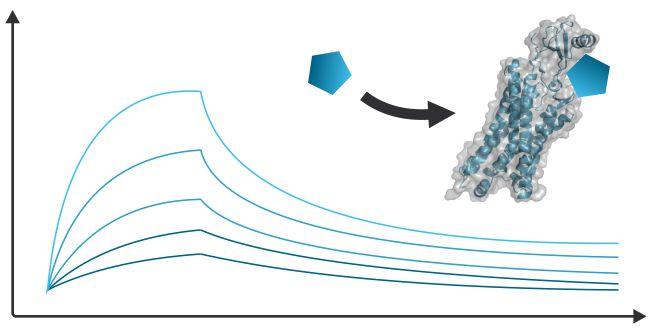Protein Biophysics, Protein Protein Interactions, Protein Peptide Interactions, Protein Binding, Protein Stability, Protein Denaturation, Protein Aggregation, Protein Unfolding