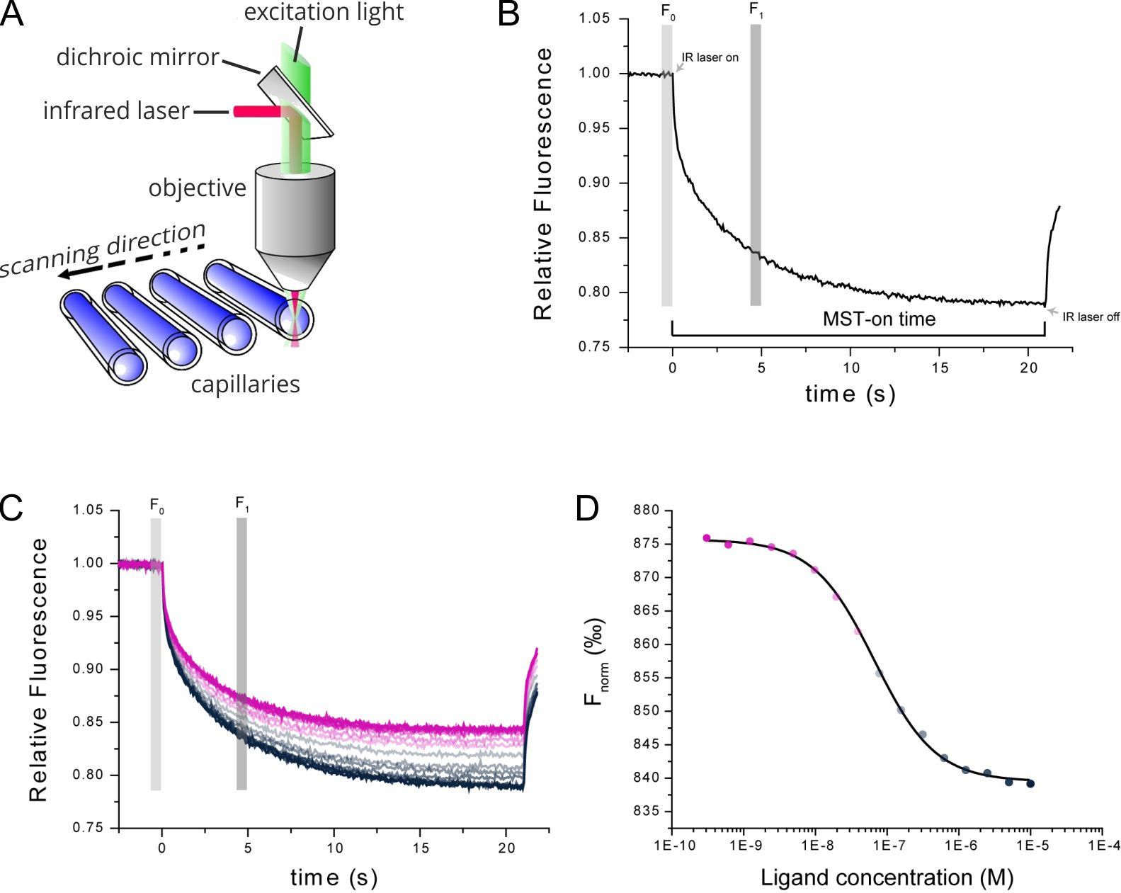 MicroScale Thermophoresis, Thermophoresis, Affinity, Molecular Interaction, Binding Strength